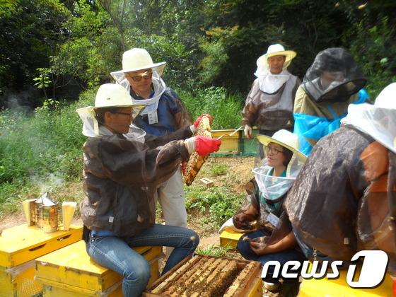 [NEWS 1] 70배 성장 서울 도시양봉 비전은…시민좌담회 개최.jpg