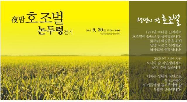 [아주경제] 시흥 夜 밤, 호조벌 논두렁 걷기 행사.png