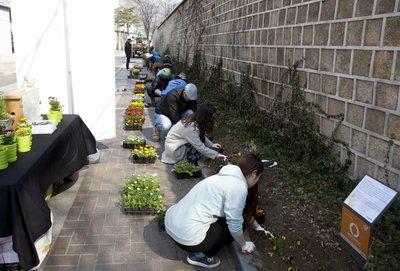 [연합뉴스] 신젠타코리아 꿀벌을 배우는 종로 감고당 문화꽃길 조성.jpg