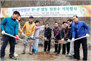 [정책브리핑]양봉산업발전을 위한 민·관 합동 밀원수 식목행사 개최.jpg