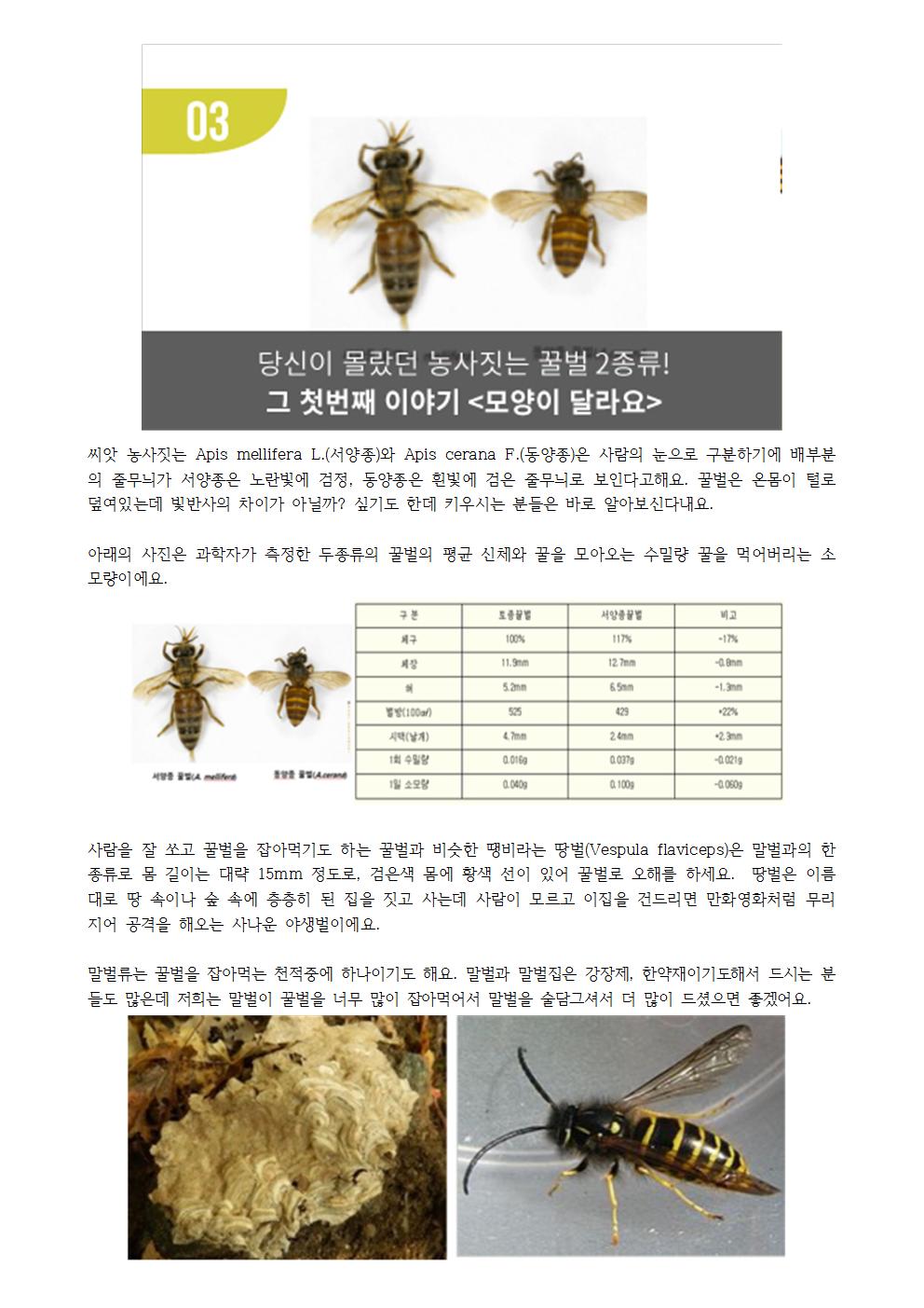 [꿀벌레터] 농사짓는 꿀벌 두 종류- 첫 번째 이야기.png